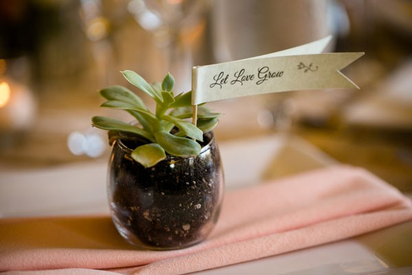 succulent wedding favor planted in glass jar with personalized flag at place setting