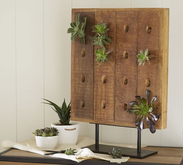 wooden succulent stand holds 16 plants
