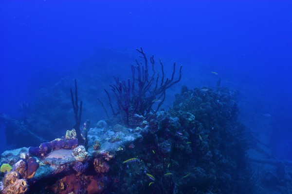 dive site where The Rhone sank off coast of British Virgin Islands