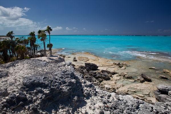 Turks & Caicos rocky coastline